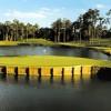 Das markante 17 Loch des TPC Sawgrass